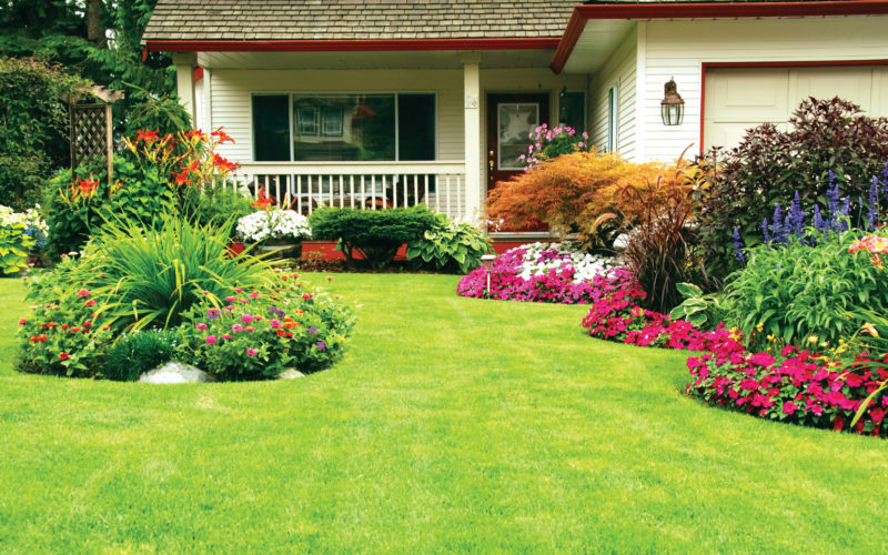 18 Landscaping Rules For Your Home | The Dirt Blog | Stauffers